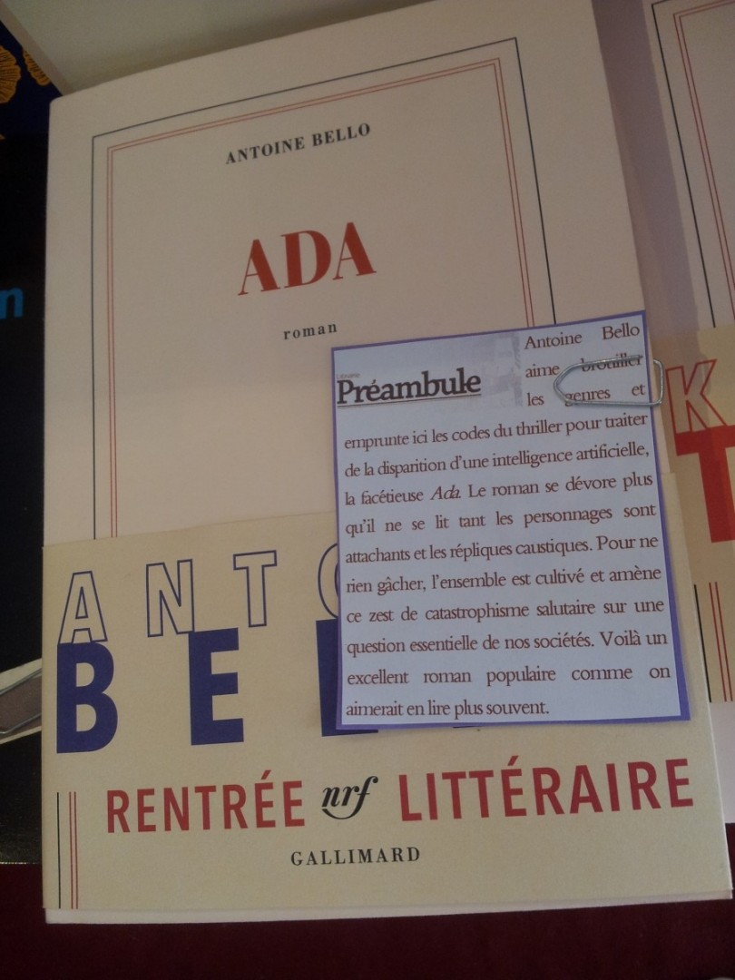 ada-antoine-bello-gallimard-160
