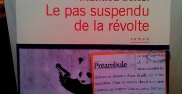 pas suspendu révolte