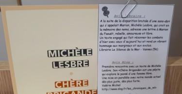 Chère Brigande Michèle Lesbre  Les Petits Mots des Libraires Chronique 05 2017