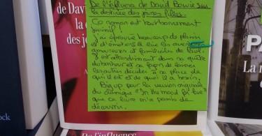 DE L'INFLUENCE DE DAVID BOWIE SUR LA DESTINEE DES JEUNES FILLES