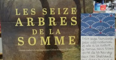 seize_arbres_somme