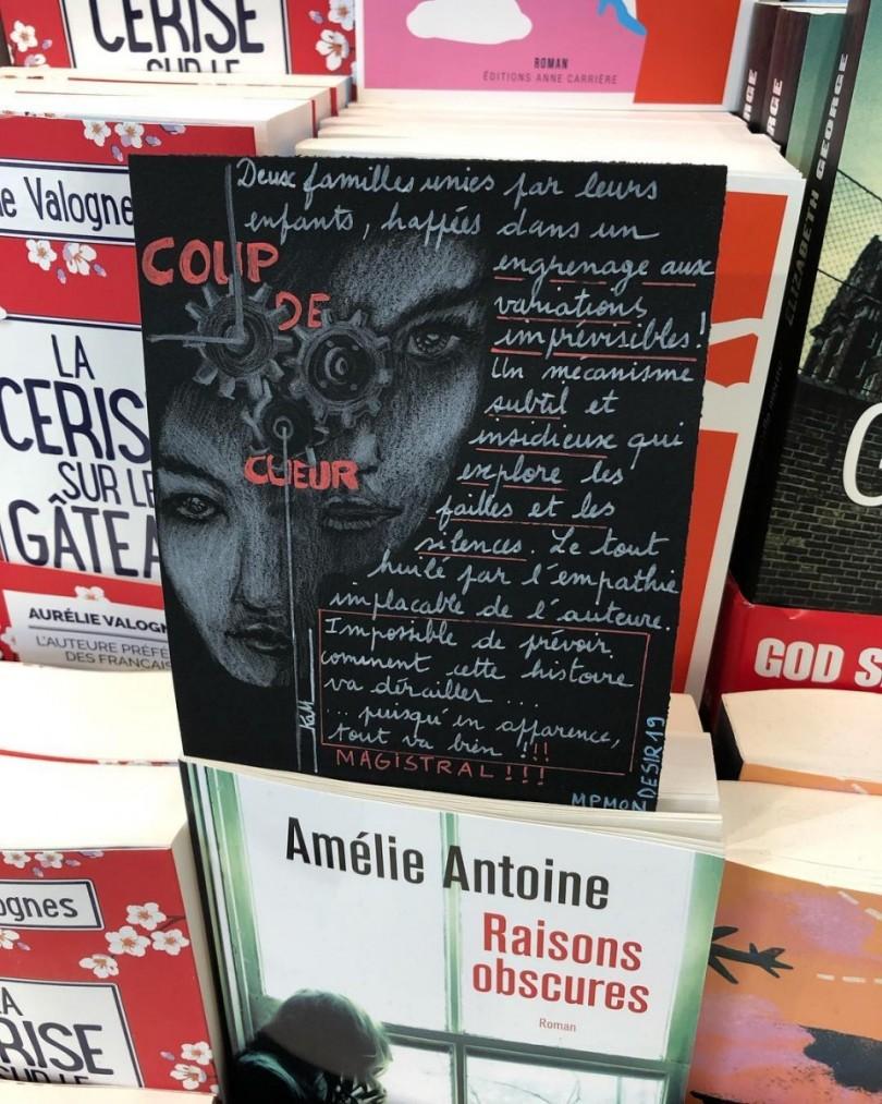 Raisons-Obscures-Amelie-Antoine-2019