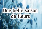 saison_fleur 2 bonne