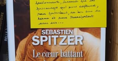 Le-coeur-battant-du-monde-Sebastien-Spitzer