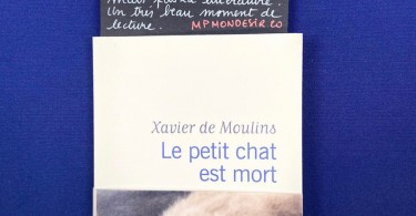 Le-petit-chat-Xavier-de-moulins
