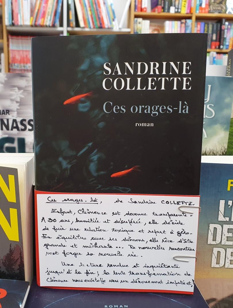 Ces orages-là de Sandrine Collette