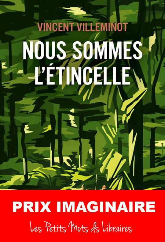 Nous-sommes-l-etincelle-Vincent-VILLEMINOT-Editions-Pocket-Jeunesse-Prix-Imaginaire-2020